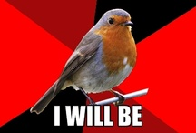 Retail Robin:)