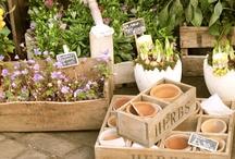 Flores  / Catering a domicilio