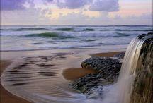 Sea / by Madhuri Yelamanchili