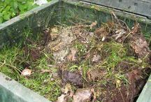 Composting / by KimR