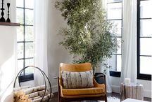 Plants + Rooms