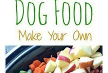 Dog home and raw feeding