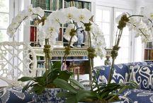 porcelan modre kvety