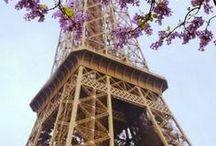 Paris & Provence