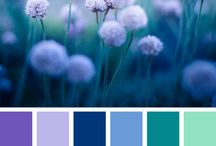 degrade de colores