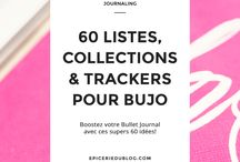 Bullet Journal/ BuJo
