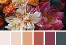 Palettes de couleurs
