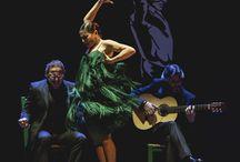 Flamenco Sara Barras