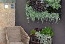 Living walls / Vertical gardens