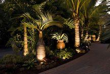 jardin iluminación
