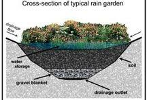 zahrada dešťová