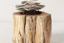 Drift wood arrangements