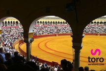 Sevilla Bullfight / Entradas toros Sevilla 2014. Feria de Abril, Feria de San Miguel. Todos los festejos taurinos de La Maestranza http://www.servitoro.com/Entradas-Toros-Sevilla.html