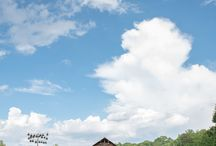 Elkin Creek Vineyard - NC Winery - NC Wedding Venues