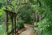 Záhrada-tunel