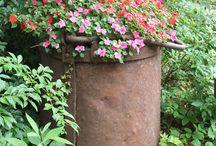 Garden Ideas - Containers