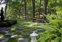 Landscape design / DIY Design