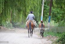 Fotografías Argentina Getty Images / Mis fotografías de Argentina a la venta en Getty Images