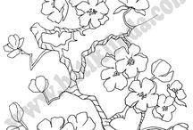 Рисунки ветка сакуры