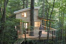 Huse i træer