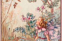 Flower fairies & more