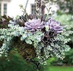 Blomsterdekorationer