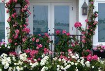 Window Box Ideas / Window box inspiration container balcony gardening flowers