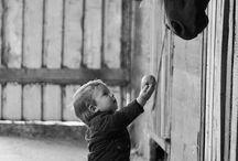 Cavalli e cuccioli
