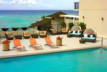 A Day at the Parc / What would you do if you stayed at the Waikiki Parc Hotel?