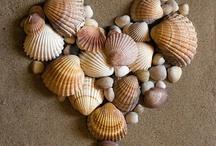 Deniz kabukları ve taşlarıyla çalışmaları