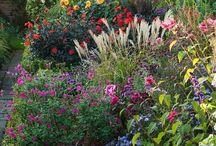 Szép kertek, virágok