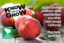 Know What We Grow (in SC)