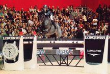 Passion équestre / La passion de la Maison Pellegrin & Fils pour le cheval.