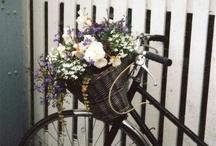 my kinda bike