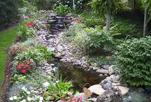 Water Features / by Ruth Wilshaw