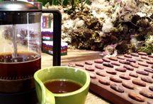 Café AMMA Chocolate – Visita II