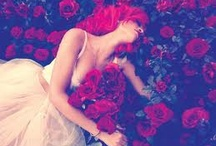 Roses / Roses Define The Beauty In Me / by Imani Rose