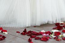 Bodas y eventos de empresa / Dar a conocer los múltiples espacios con los que cuenta el Complejo Azurmendi para la celebración de bodas, eventos, reuniones y congresos empresariales.