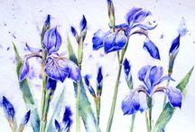 Watercolor IS....