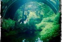 Japanese gardens / by Georgia Schroth