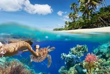 Best Snorkel Locations in the World