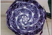 Food fractals