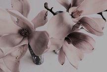 Бледно-розовое