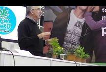 cultivando plantas medicinales