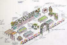 Edible Garden Layouts