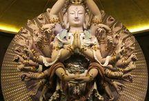 budhis