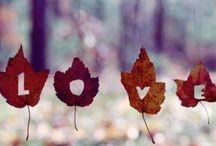 ✖ Herfst ✖ / Niet ons favoriete seizoen. Maar door dit pin-bord wel véél leuker!