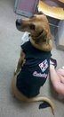 Our mascot:)