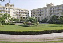 Property in greater Noida