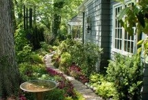 The Yard / by Sandra Clay
